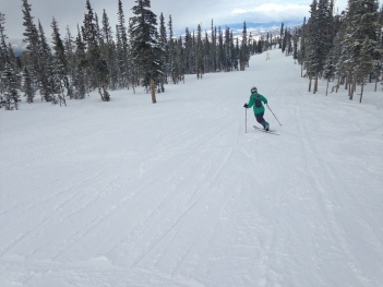 I also put on my telemark skis after not using them for eight years (and then could barely walk for the next week.) I am trying to relearn this skill so I can use my tele skills to get out to some Colorado ski huts next winter. Stay tuned for a post in 2016 about changing your appliance in a communal ski hut.